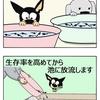 【クピレイ犬漫画】オタマの神様