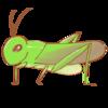 【蝗害の話】コロナウイルス騒動に、上乗せ大災害(※注意※昆虫出演記事)