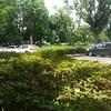 調布市・三鷹市にある都立野川公園に行ってきました。発達障害があるお子さんが楽しむポイント