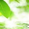 瞑想がうつの改善に効果的なわけ