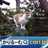 2020年4月分 鈴木社長の日誌・日記・備忘 cari.jp