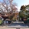 鷺森神社の秋、紅葉がある光景2017。