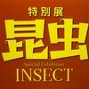 上野・国立科学博物館【特別展 昆虫】に行ってみた感想とアクセスやチケット情報まとめ
