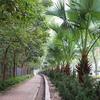 【香港旅行記その15】のんびり散歩。水鳥があつまる香港湿地公園(ウェットランド・パーク)