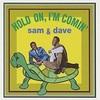 Hold On, I'm Coming もしくはブルースブラザーズ特集#5 (1966. Sam & Dave)