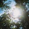 Super Takumar 55mm f1.8で撮る秋の始まり