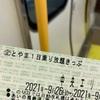 あいの風とやま鉄道→万葉線→《とやま1日乗り放題きっぷで回遊ルート最後の乗り倒し その1》