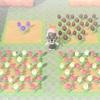 【どうぶつの森】むらさきチューリップが咲いた?!チューリップ園つくったった【あつ森】