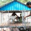 家畜と生きる。〜やぎ銀行で持続可能な収入源を〜
