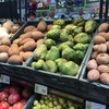 Guanabana グアナバナの食べ方と切り方-メキシコで南国フルーツに挑戦