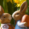 赤ちゃんの耳(耳瘻孔・副耳・折れ耳)の相談にお答えします。