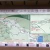 初心者が歩く熊野古道。大門坂〜那智の滝