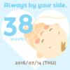 38W0D☆おおぅ!38週に突入(; ・`д・´)