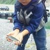 奥尻島キャンプ4