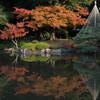紅葉の旧古河庭園を歩く