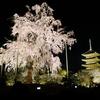 2020年(昨年)の京都3泊4日花見ソロ旅1日目 京都駅周辺と東寺ライトアップ編
