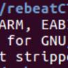 CyberRebeatCTF crackme writeup