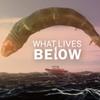 What Lives Below ボートと銛だけで神話生物を狩る海洋モンスターハントアクション