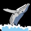 日本が国際捕鯨委員会から脱退のニュースを目にしたけど、、、?
