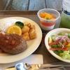 【TDS】ユカタン・ベースキャンプ・グリルのトロピカル!?な絶品ハンバーグセットをご紹介!