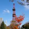 【道産子のぼやき】北海道大好きな私が地元を離れて感じたこと