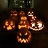 【10月31日はHalloweenの日...だけではない!?ドイツ祝日と宗教的な意味 / Tag36】