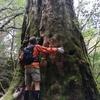宮之浦岳に登ってきました