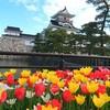 富山城へ観光!アクセス・駐車場・郷土博物館・佐藤記念美術館の料金・営業時間