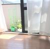 【水ピカ】床掃除で不快な季節を爽やかに過ごす。