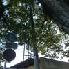 黒髪菅原神社の火の見櫓