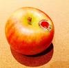 【果肉のほとんどが蜜?】幻のりんご、こみつ(高徳)とは?時期や通販について