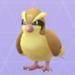 【ポケモンGO】ポッポ 2 匹進化 無理ゲー  【ピジョンを進化させると】