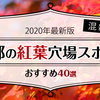 【2020年最新版】混雑しない京都の紅葉穴場スポットおすすめ40選
