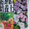 花咲かばぁさん見習い中 トマト🍅を植える