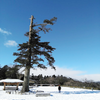 雪景色の旅
