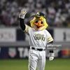 【野球】3月5日ホークスVSライオンズオープン戦見てきました!