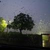 雨の日のジョギングについて考える。
