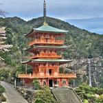 今年見た様々な櫻~満開ではなかったが、関西方面の本場吉野山他から地元まで。。。