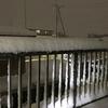 南岸低気圧に伴う関東地方の大雪