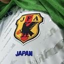 クロコダイルのサッカー日本代表にもの申す!