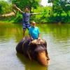 象遊びのイメージを根底から覆す!!タイで一番象と触れ合える場所!タビイク3日目!