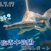 【レポ#27】サメが見たくて行ってきた!葛西臨海水族園現地レポート(2021/7/17)【前編】