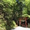 澄み切った冷たい空気が美しい紅葉の青を輝かせています。貴船神社の街道です。
