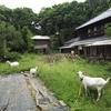 家庭稲作講座への申込み、そして建築家さんとの出会い ~サラリーマンの僕が、週末田舎暮らしを始める理由 その2~