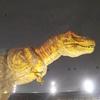 【旅行】福井県の恐竜博物館へ行く!沢山の恐竜の化石や模型が展示されてます。