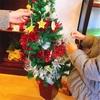 東京ロハスのお店にてクリスマスイベントを開催します♪