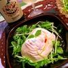 彩り野菜の洋風塩麹豆腐オードブル