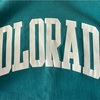 849 Champion reverse weave RARE COLOR college sweat 90's