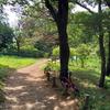 2021, 4/25 自転車 野川サイクリングロード