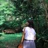 8月の森の中